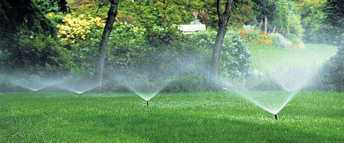 6 easy steps to get the perfect sprinkler pump   Pumps Africa